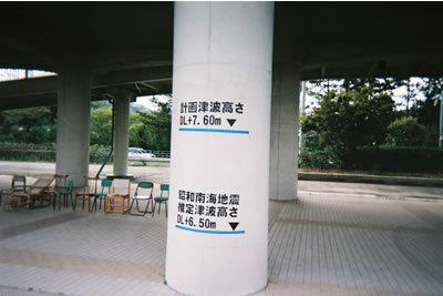 Tunamiikumi1